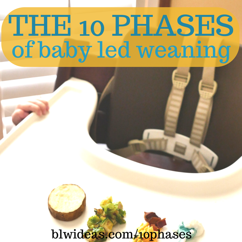10 Phases Of Baby Led Weaning Bethany King